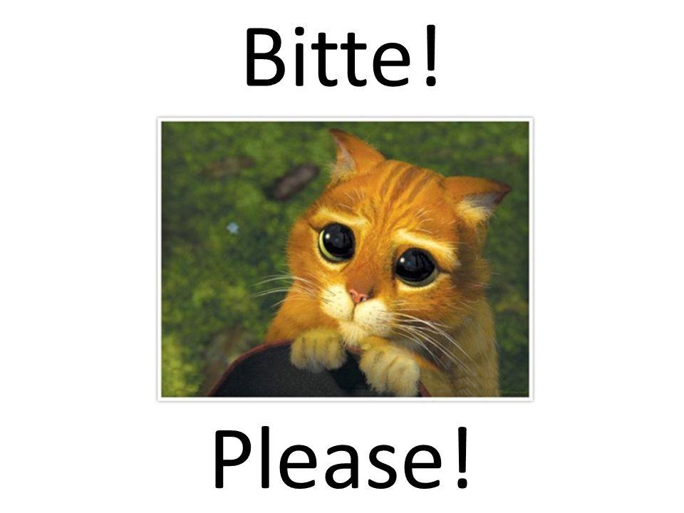 Bitte! Please!