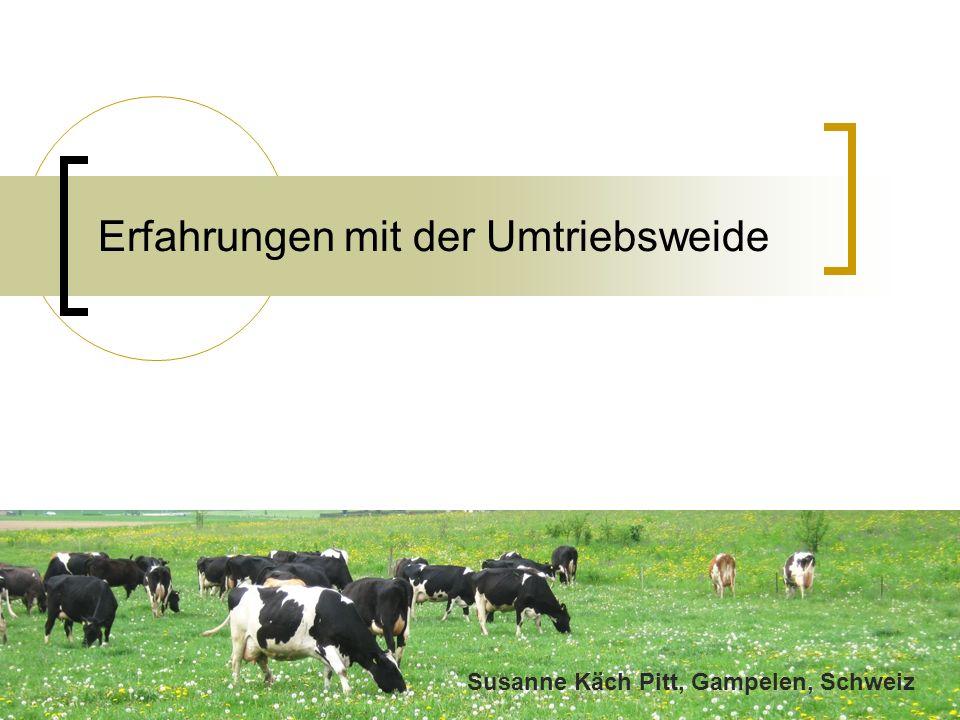 Erfahrungen mit der Umtriebsweide Susanne Käch Pitt, Gampelen, Schweiz