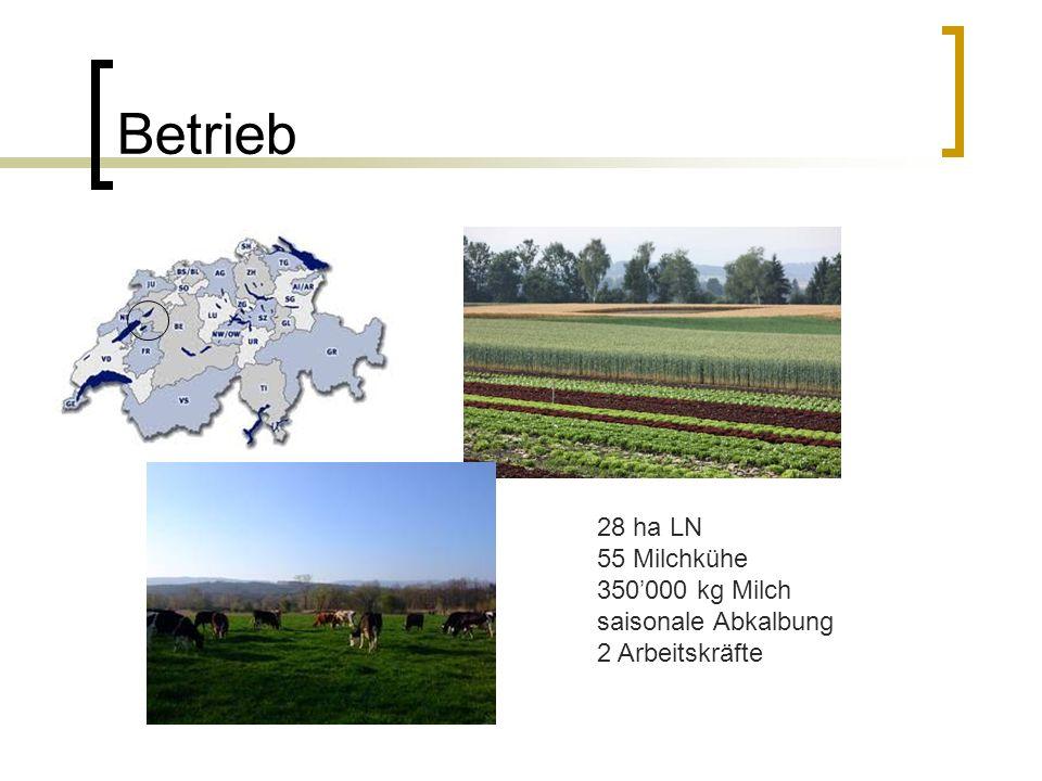 Betriebsentwicklung 1979199720032008 Anzahl Kühe 12254255 Weideanteil an der Sommerration 30%90%100% Weidesystem Einfache Umtriebs- weide Kurzrasen- weide Umtriebs- weide Umtriebs- weide nach LUDF Umstellung auf saisonale Abkalbung