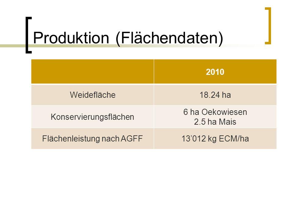 Produktion (Flächendaten) 2010 Weidefläche18.24 ha Konservierungsflächen 6 ha Oekowiesen 2.5 ha Mais Flächenleistung nach AGFF13'012 kg ECM/ha