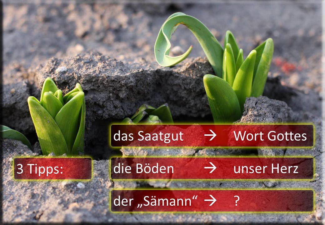 """das Saatgut  Wort Gottes die Böden  unser Herz der """"Sämann""""  ? 3 Tipps:"""