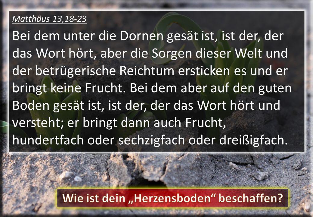 Matthäus 13,18-23 Bei dem unter die Dornen gesät ist, ist der, der das Wort hört, aber die Sorgen dieser Welt und der betrügerische Reichtum ersticken