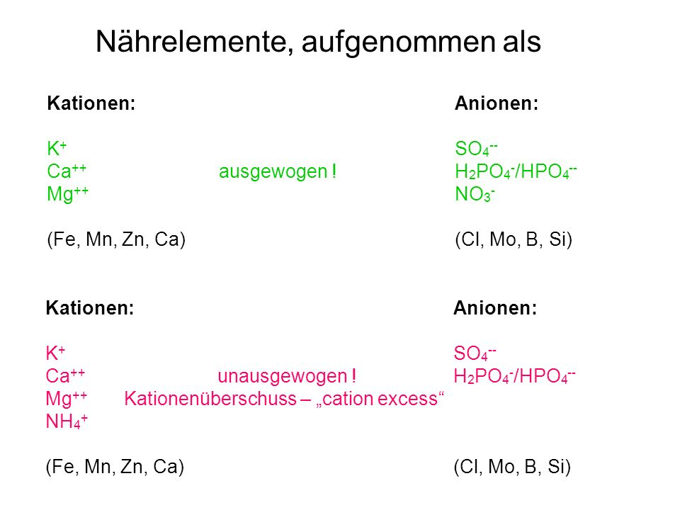 "Kationen: Anionen: K + SO 4 -- Ca ++ ausgewogen !H 2 PO 4 - /HPO 4 -- Mg ++ NO 3 - (Fe, Mn, Zn, Ca) (Cl, Mo, B, Si) Nährelemente, aufgenommen als Kationen: Anionen: K + SO 4 -- Ca ++ unausgewogen !H 2 PO 4 - /HPO 4 -- Mg ++ Kationenüberschuss – ""cation excess NH 4 + (Fe, Mn, Zn, Ca) (Cl, Mo, B, Si)"
