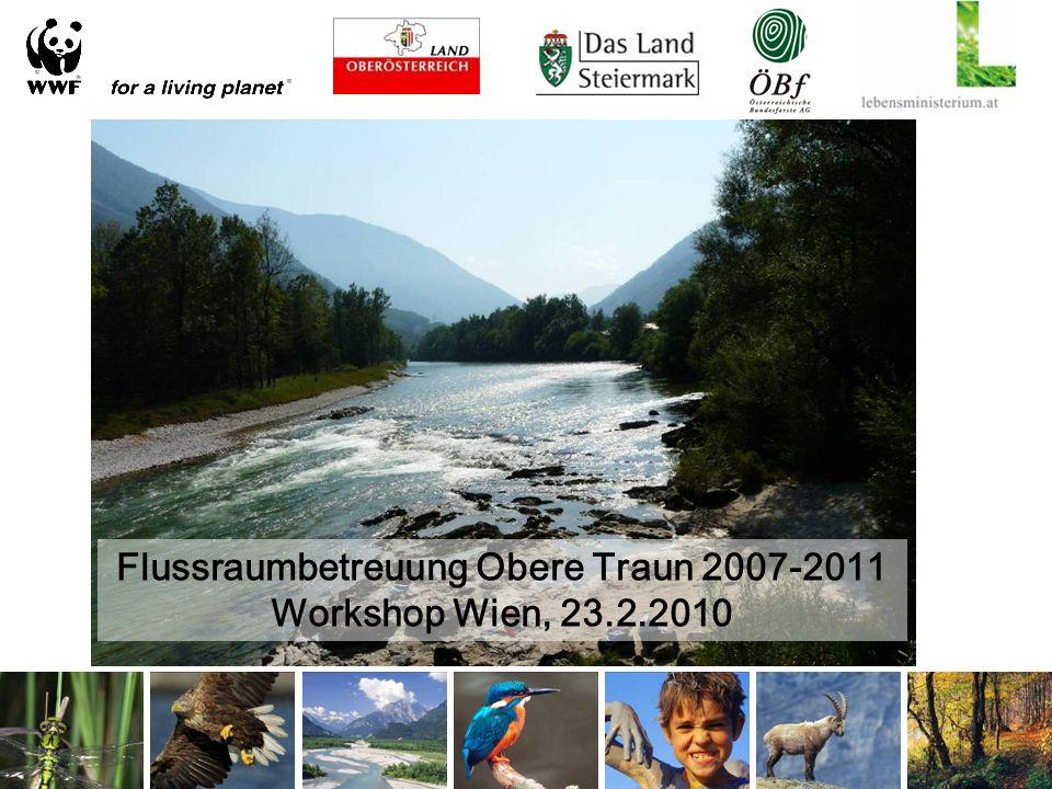 Flussraumbetreuung Obere Traun 2007-2011 Workshop Wien, 23.2.2010