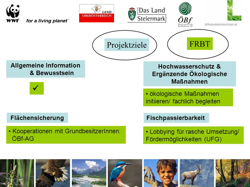Projektziele Allgemeine Information & Bewusstsein Flächensicherung Hochwasserschutz & Ergänzende Ökologische Maßnahmen Fischpassierbarkeit FRBT ökologische Maßnahmen initiieren/ fachlich begleiten Kooperationen mit GrundbesitzerInnen: ÖBf-AG Lobbying für rasche Umsetzung/ Fördermöglichkeiten (UFG)