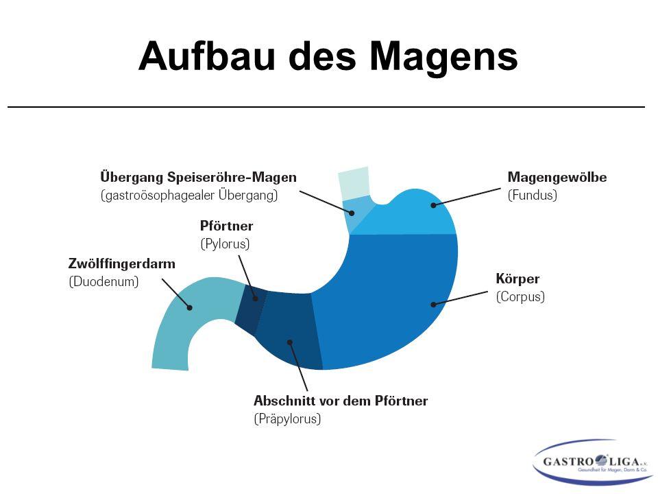 Therapie des Magenkrebs Stadium I EMR Präop.