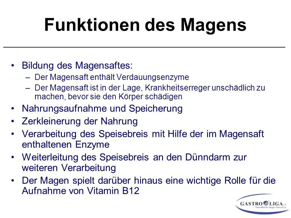 Nett Funktion Des Magen Fotos - Menschliche Anatomie Bilder ...