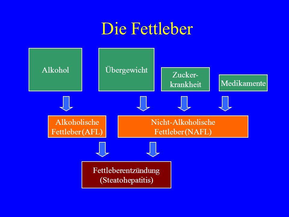 Die Fettleber Alkohol Alkoholische Fettleber (AFL) Übergewicht Nicht-Alkoholische Fettleber (NAFL) Fettleberentzündung (Steatohepatitis) Zucker- krank