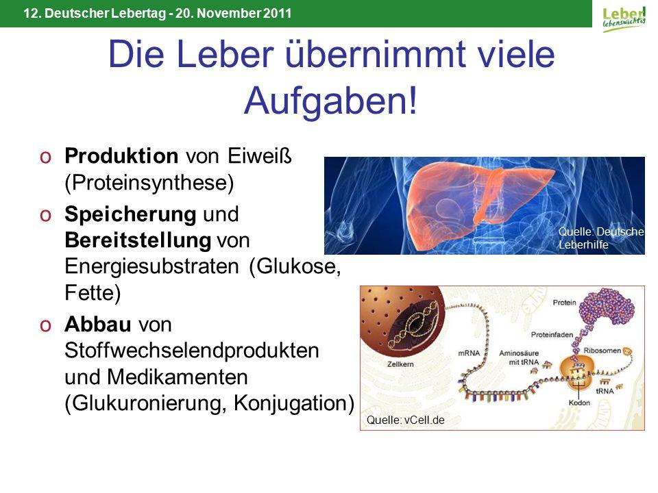 12. Deutscher Lebertag - 20. November 2011 Die Leber übernimmt viele Aufgaben.