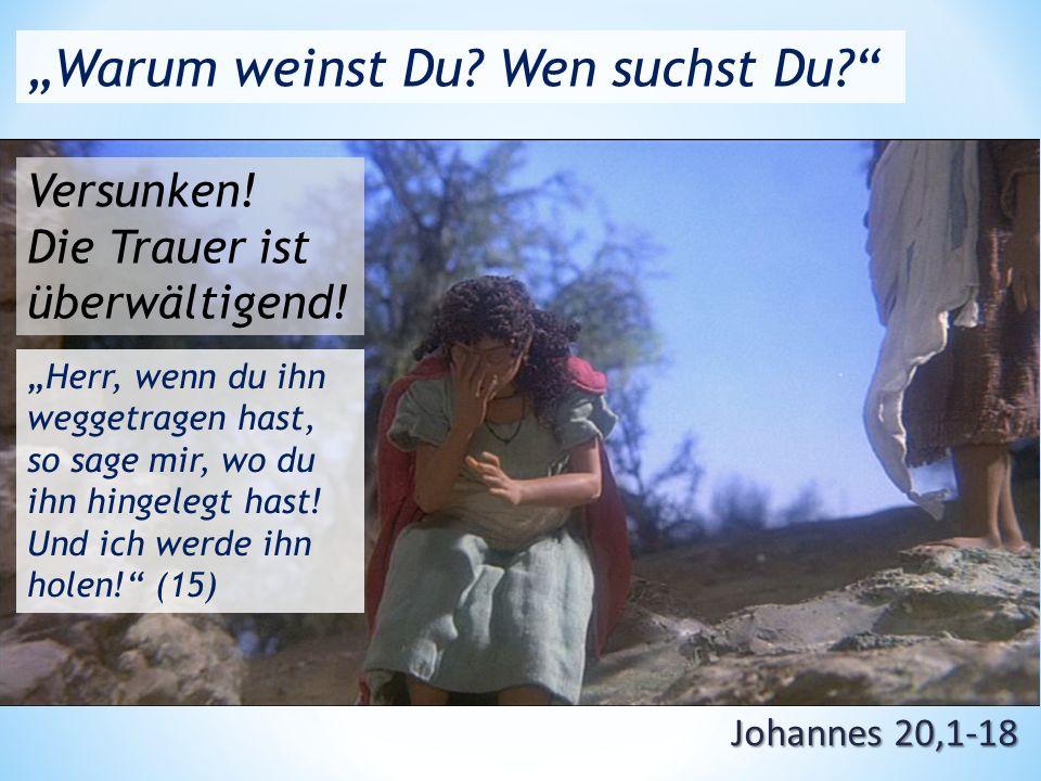 """Johannes 20,1-18 """"Warum weinst Du. Wen suchst Du Versunken."""