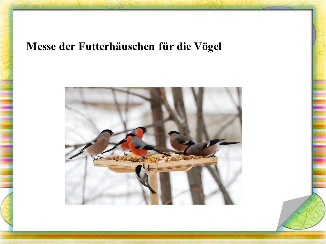 Messe der Futterhäuschen für die Vögel
