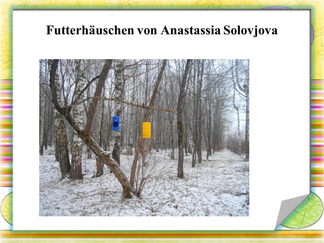 Futterhäuschen von Anastassia Solovjova
