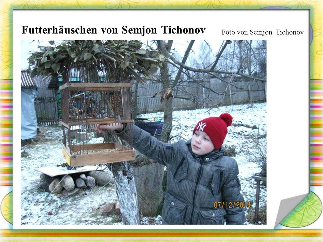 Foto von Semjon Tichonov Futterhäuschen von Semjon Tichonov