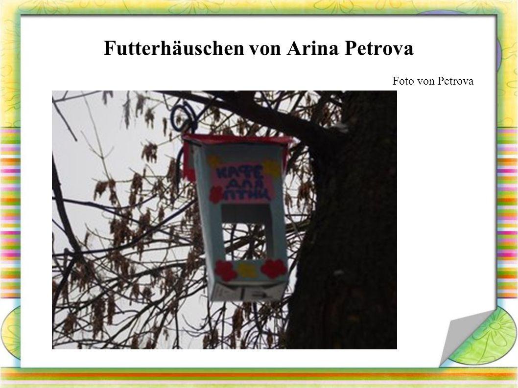 Futterhäuschen von Arina Petrova Foto von Petrova