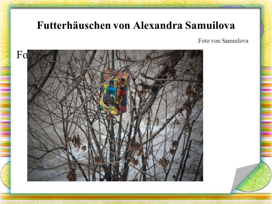 Futterhäuschen von Alexandra Samuilova Foto von Foto von Samuilova
