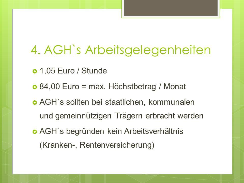 4. AGH`s Arbeitsgelegenheiten  1,05 Euro / Stunde  84,00 Euro = max. Höchstbetrag / Monat  AGH`s sollten bei staatlichen, kommunalen und gemeinnütz