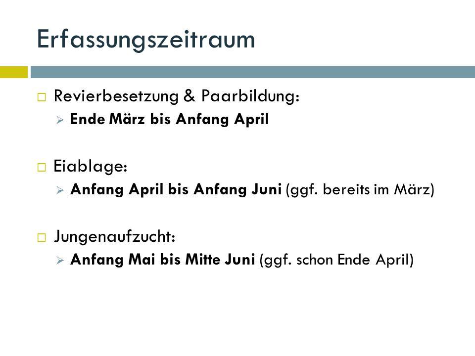 Erfassungszeitraum  Revierbesetzung & Paarbildung:  Ende März bis Anfang April  Eiablage:  Anfang April bis Anfang Juni (ggf.