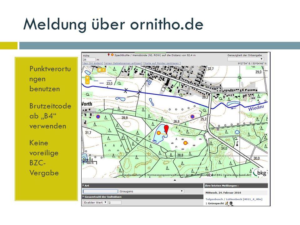 """Meldung über ornitho.de  Punktverortu ngen benutzen  Brutzeitcode ab """"B4 verwenden  Keine voreilige BZC- Vergabe"""