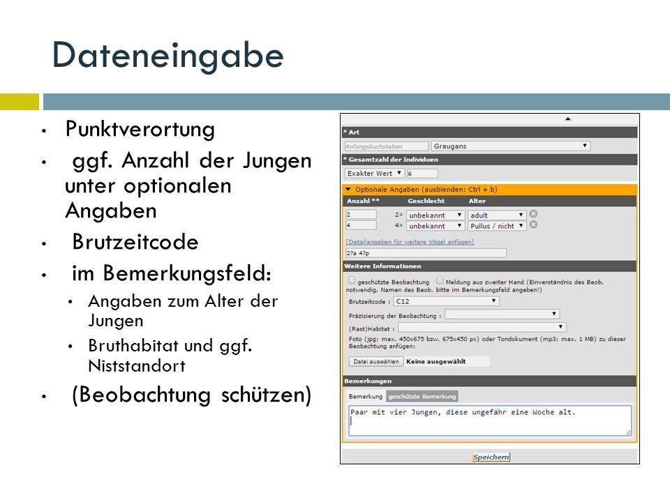 Dateneingabe Punktverortung ggf.