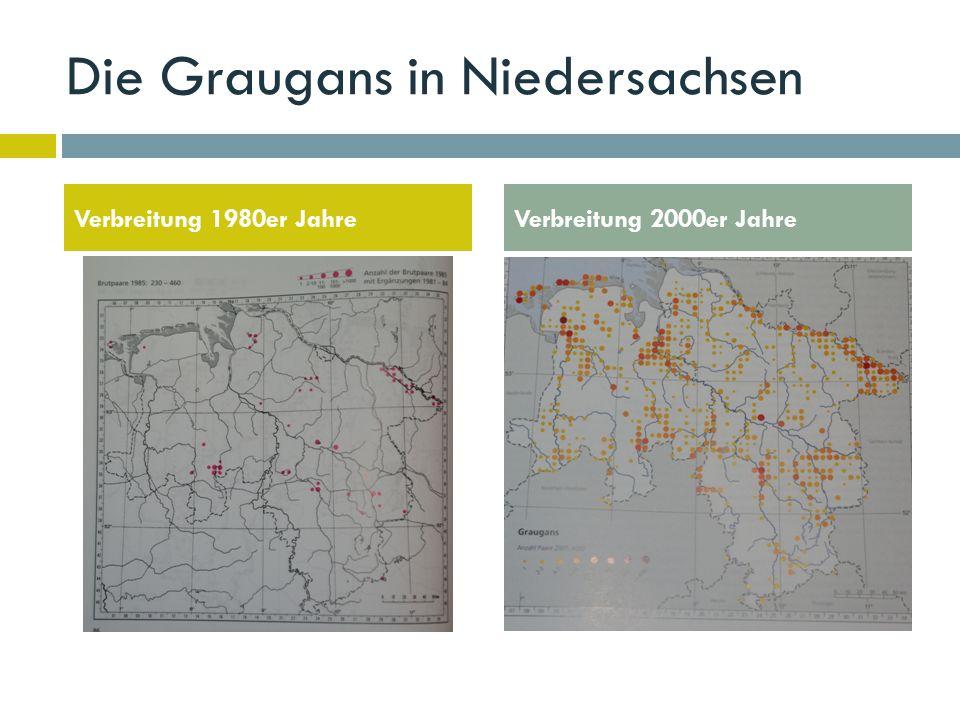 Die Graugans in Niedersachsen Verbreitung 1980er JahreVerbreitung 2000er Jahre