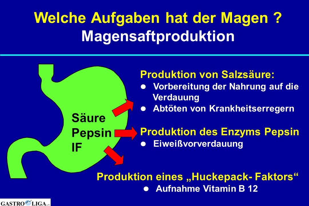 Säure Pepsin IF Produktion von Salzsäure: Vorbereitung der Nahrung auf die Verdauung Abtöten von Krankheitserregern Produktion des Enzyms Pepsin Eiwei