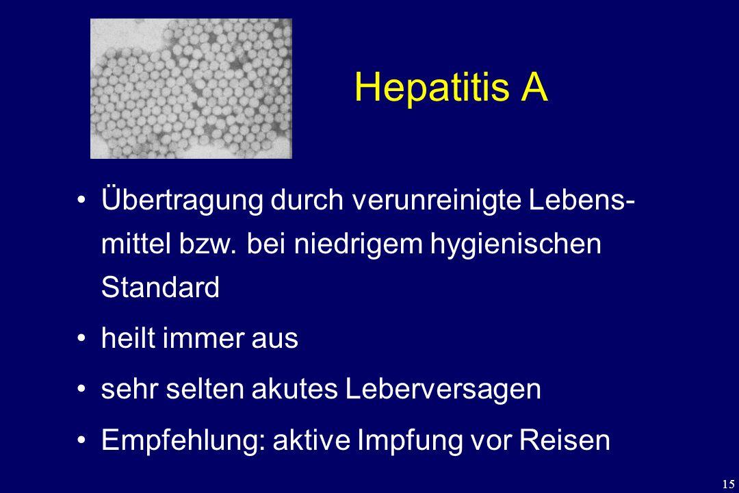 15 Hepatitis A Übertragung durch verunreinigte Lebens- mittel bzw. bei niedrigem hygienischen Standard heilt immer aus sehr selten akutes Leberversage