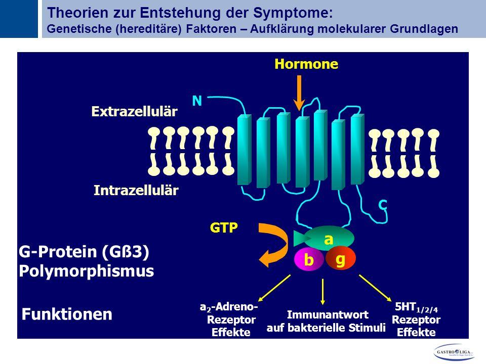 Titel N C Extrazellulär Intrazellulär a b g GTP Hormone Funktionen 5HT 1/2/4 Rezeptor Effekte a 2 -Adreno- Rezeptor Effekte Immunantwort auf bakterielle Stimuli G-Protein (Gß3) Polymorphismus Theorien zur Entstehung der Symptome: Genetische (hereditäre) Faktoren – Aufklärung molekularer Grundlagen