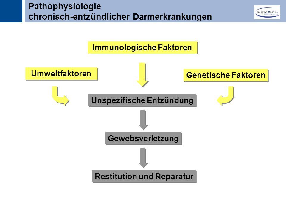 Titel Unspezifische Entzündung Gewebsverletzung Restitution und Reparatur Genetische Faktoren Umweltfaktoren Immunologische Faktoren Pathophysiologie chronisch-entzündlicher Darmerkrankungen