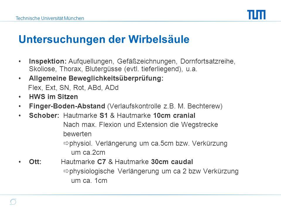 Technische Universität München Untersuchungen der Wirbelsäule Inspektion: Aufquellungen, Gefäßzeichnungen, Dornfortsatzreihe, Skoliose, Thorax, Bluter