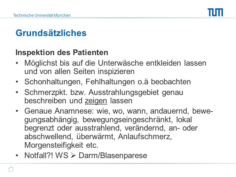 Technische Universität München Untersuchungsmittel Hände mit sicherem und dosiertem Griff Reflexhammer Winkelmesser  Neutral-Null-Methode Maßband Augenmaß (abnorme Beweglichkeit, Symmetrie) Apparative Diagnostik: CT, MRT, Sono, Röntgen, Arthroskopie, evtl.