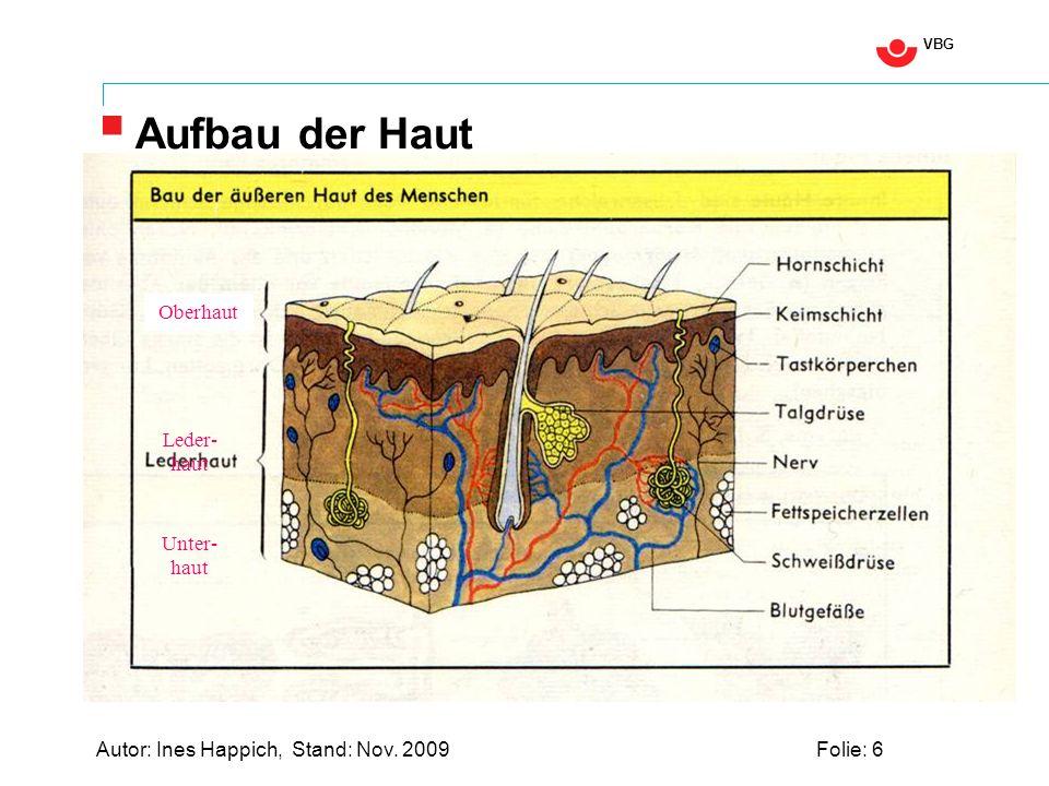 VBG Autor: Ines Happich, Stand: Nov. 2009Folie: 6 Aufbau der Haut Oberhaut Leder- haut Unter- haut