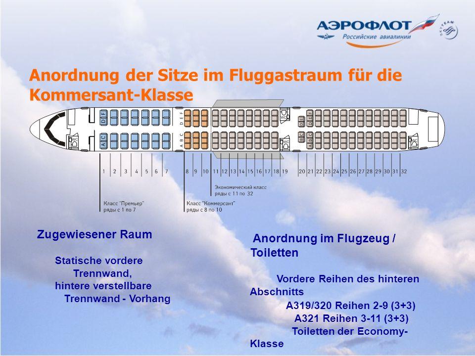 Zugewiesener Raum Statische vordere Trennwand, hintere verstellbare Trennwand - Vorhang Anordnung im Flugzeug / Toiletten Vordere Reihen des hinteren