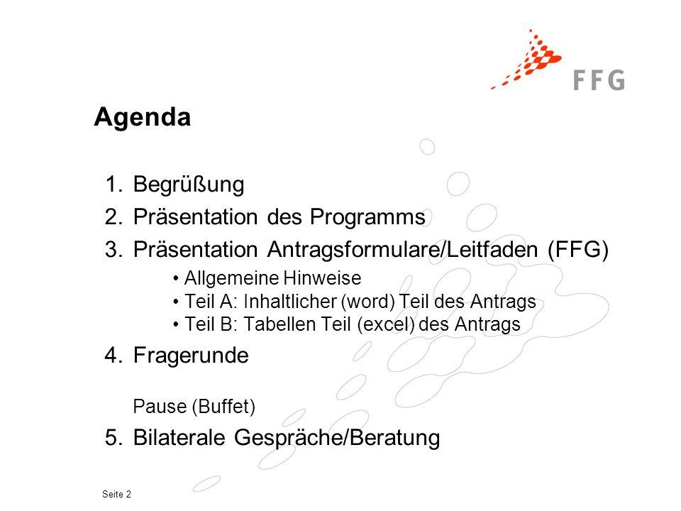 Seite 2 Agenda 1.Begrüßung 2.Präsentation des Programms 3.Präsentation Antragsformulare/Leitfaden (FFG) Allgemeine Hinweise Teil A: Inhaltlicher (word) Teil des Antrags Teil B: Tabellen Teil (excel) des Antrags 4.Fragerunde Pause (Buffet) 5.Bilaterale Gespräche/Beratung