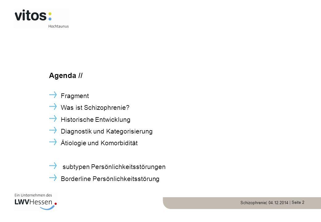 Schizophrenie| 04.12.2014 | Seite 13 Halluzinationen Wahn (Falsche Überzeugung) Denkstörung (zB zerfahrenes Denken) Ich-Störung Schizophrenie: Positivsymptomatik//