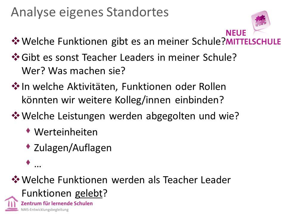 Analyse eigenes Standortes  Welche Funktionen gibt es an meiner Schule?  Gibt es sonst Teacher Leaders in meiner Schule? Wer? Was machen sie?  In w