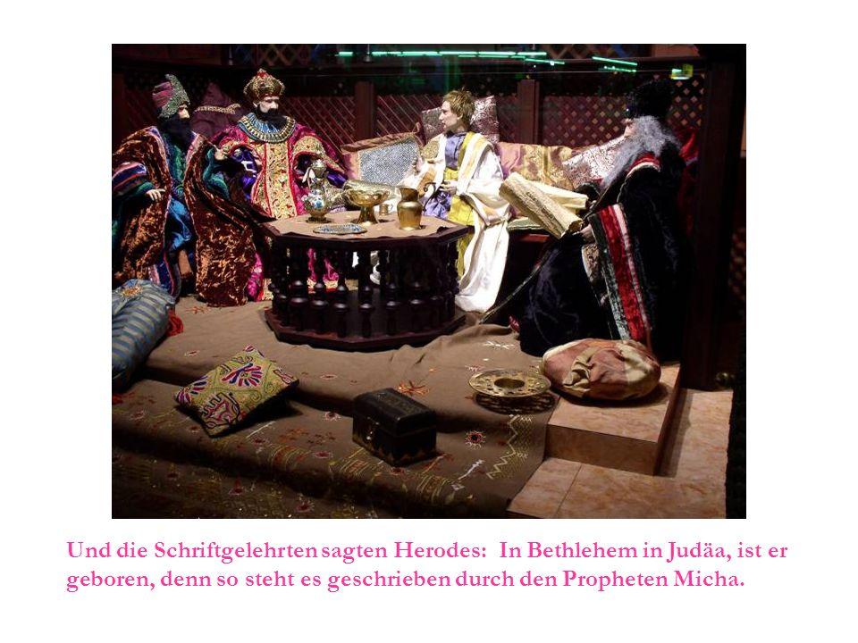 Und die Schriftgelehrten sagten Herodes: In Bethlehem in Judäa, ist er geboren, denn so steht es geschrieben durch den Propheten Micha.