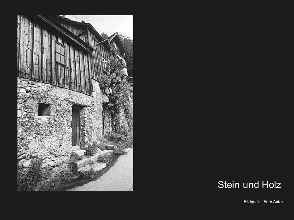 Bildquelle: Foto Autor Holz und Stein Erfahrungswissen - Sommeruniversität Lungau 2013
