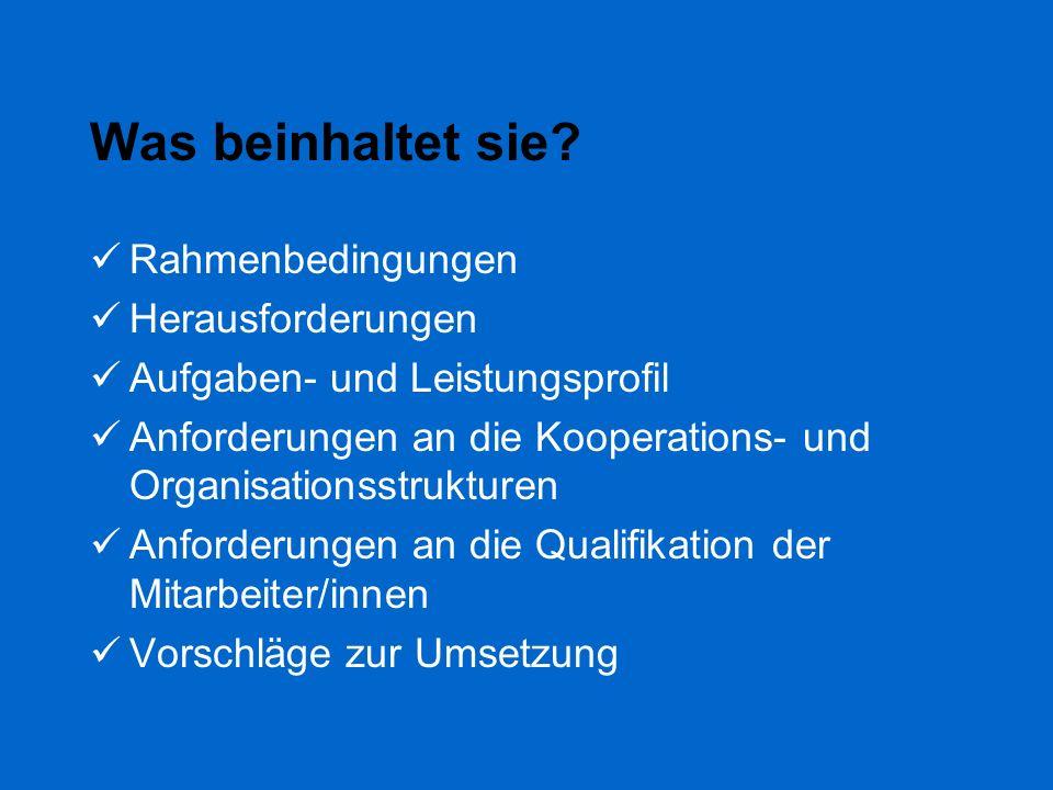 Was beinhaltet sie? Rahmenbedingungen Herausforderungen Aufgaben- und Leistungsprofil Anforderungen an die Kooperations- und Organisationsstrukturen A