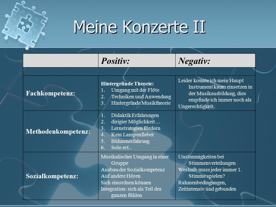 Meine Konzerte II Positiv:Negativ: Fachkompetenz: Hintergründe Theorie: 1.Umgang mit der Flöte 2.Techniken und Anwendung 3.Hintergründe Musiktheorie L