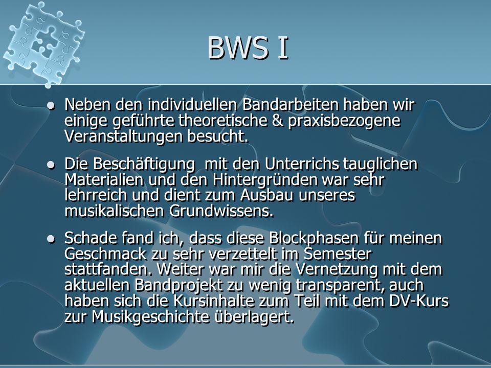 BWS I Neben den individuellen Bandarbeiten haben wir einige geführte theoretische & praxisbezogene Veranstaltungen besucht. Die Beschäftigung mit den