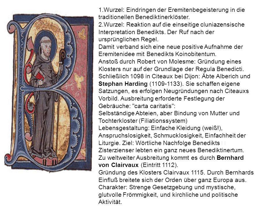 1.Wurzel: Eindringen der Eremitenbegeisterung in die traditionellen Benediktinerklöster. 2.Wurzel: Reaktion auf die einseitige cluniazensische Interpr