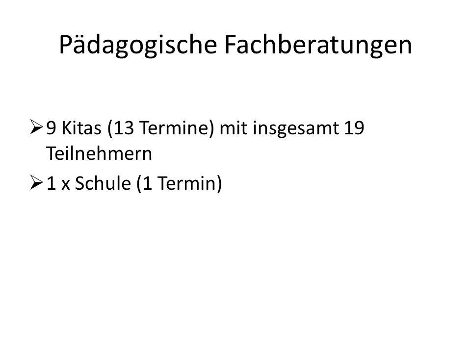 Pädagogische Fachberatungen  9 Kitas (13 Termine) mit insgesamt 19 Teilnehmern  1 x Schule (1 Termin)