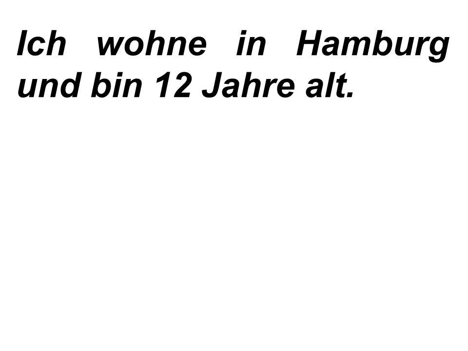 Меня зовут Мартин Вебер и мне 11 лет. Я живу во Франкфурте.