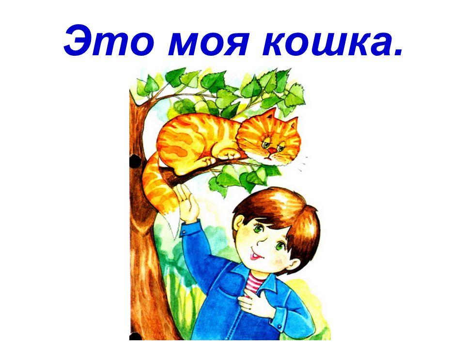 Das ist meine Katze.