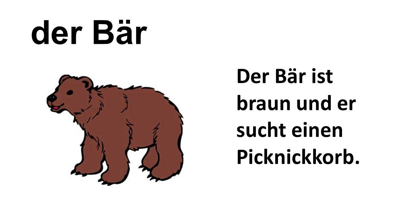 der Bär Der Bär ist braun und er sucht einen Picknickkorb.