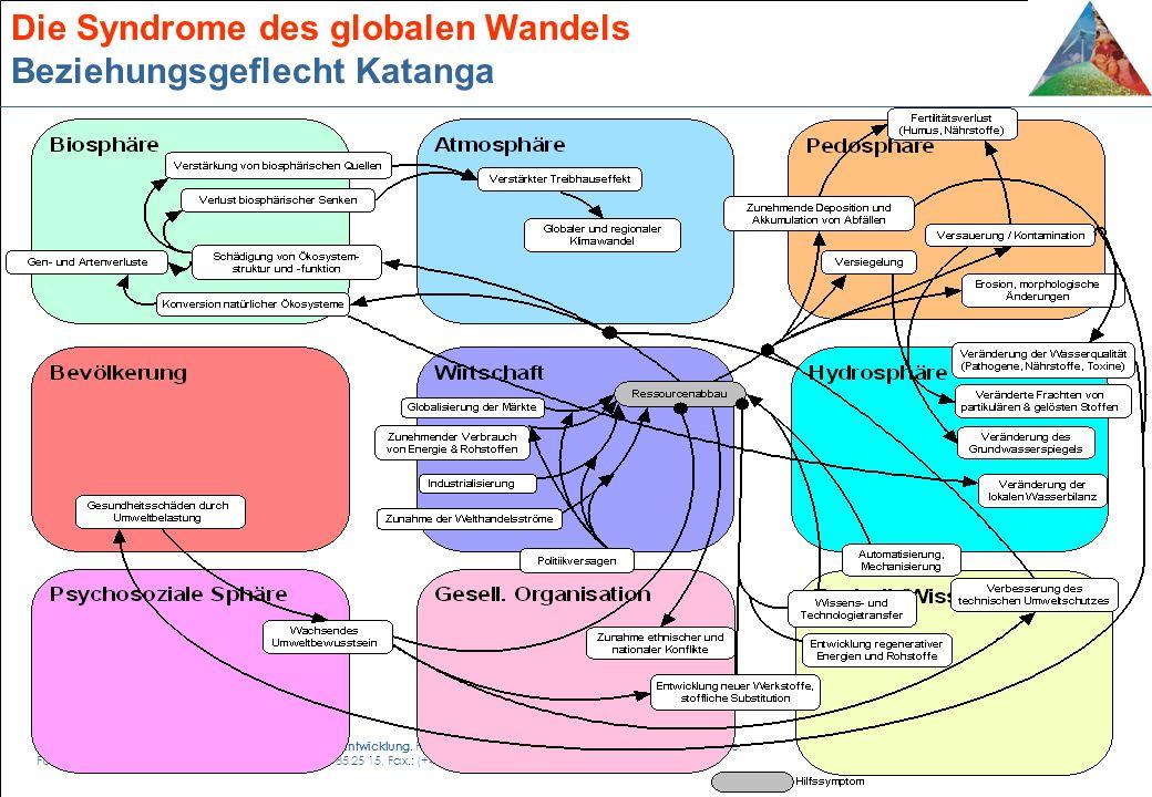 Die Syndrome des globalen Wandels Beziehungsgeflecht Katanga