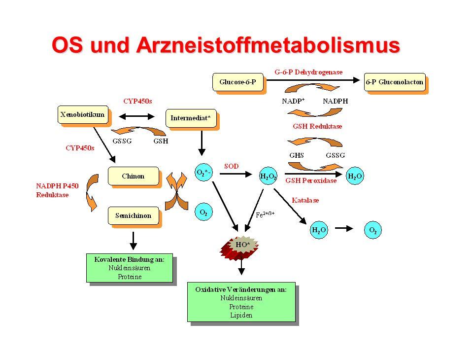 OS und Arzneistoffmetabolismus