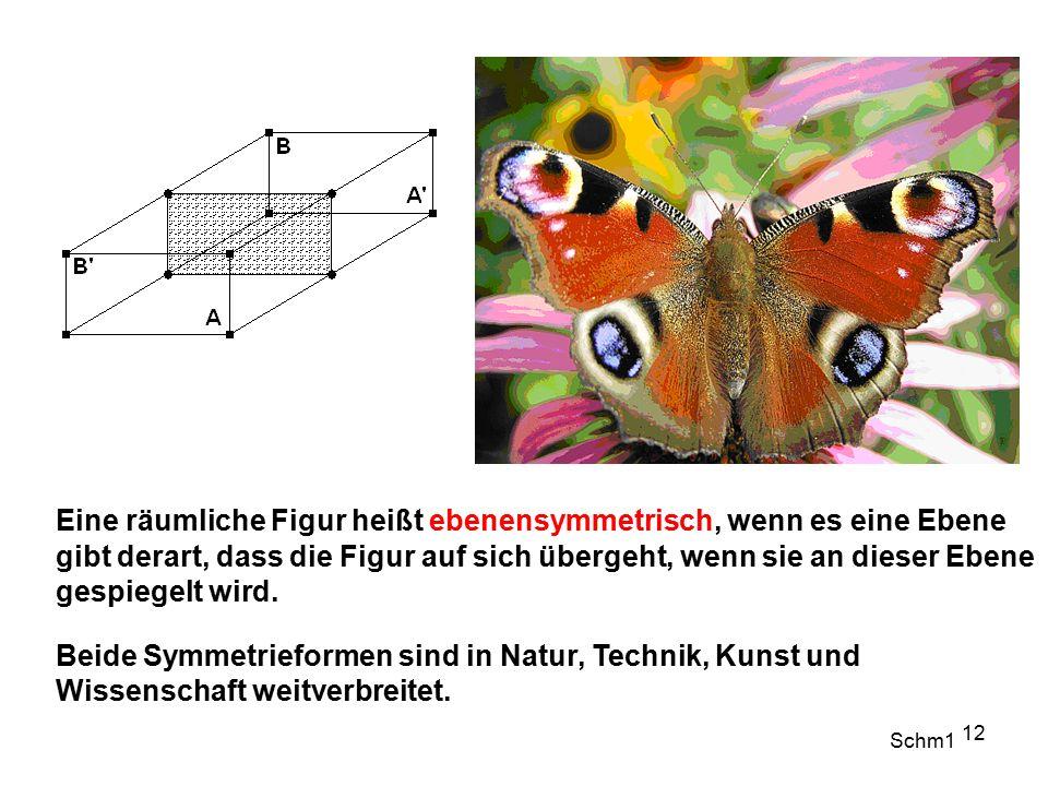 12 Eine räumliche Figur heißt ebenensymmetrisch, wenn es eine Ebene gibt derart, dass die Figur auf sich übergeht, wenn sie an dieser Ebene gespiegelt wird.