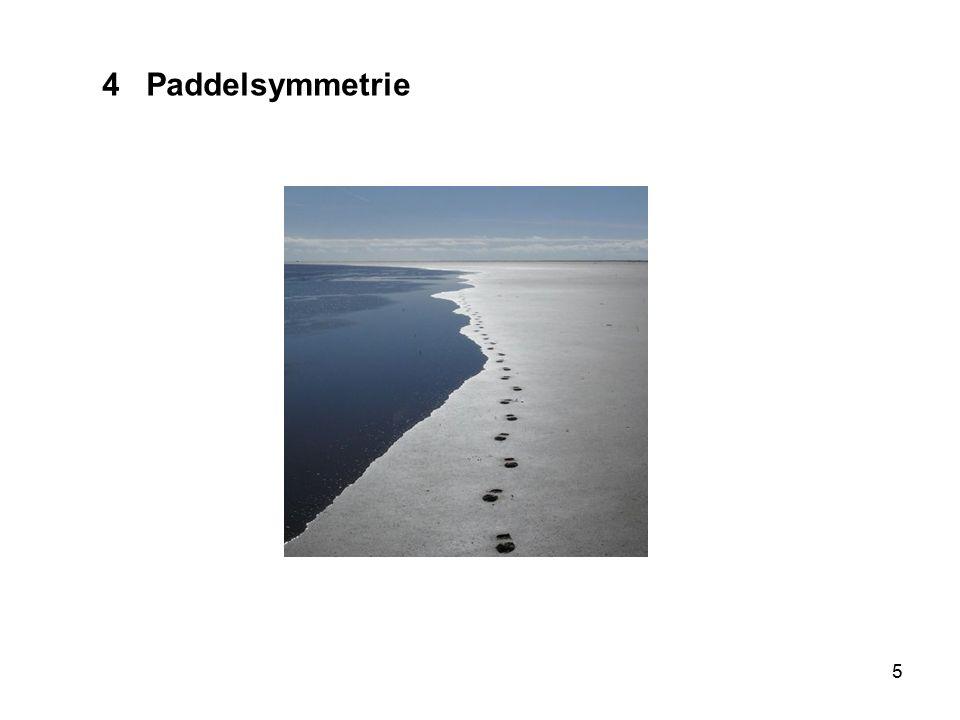5 4 Paddelsymmetrie