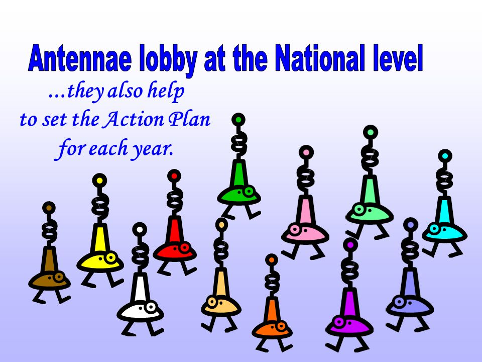 The representatives of the 12 Antennae who gathered in Brussels, at the beginning of October, decided to focus the common Action Plan for 2006 on the following issues: 1.